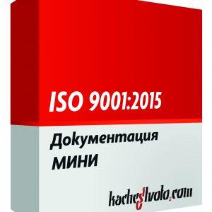 ISO 9001 МИНИ
