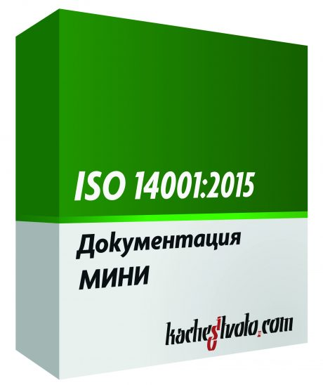 ISO 14001 МИНИ