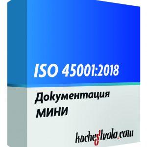 ISO 45001 МИНИ